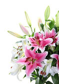 Pink and white lily bouquet closeup — Stock Photo