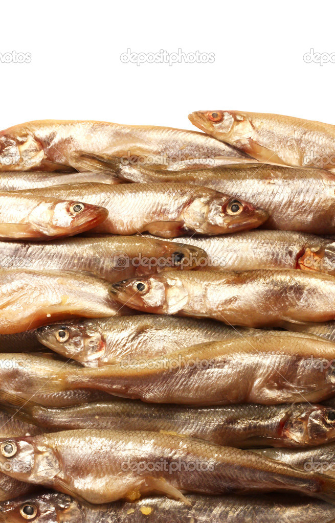 Smelt small fresh fish background and white copy space  Stock Photo #10246436