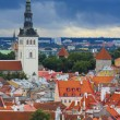 Panorama of old Tallinn — Stock Photo