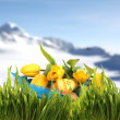 Stock Photo: Easter basket with eggs and tulips in spring mountains