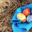Easter eggs and textile on hay — Stock Photo #9562759