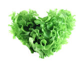 Heart shaped lettuce salad — Stock Photo