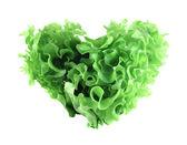 Coração em forma de salada de alface — Foto Stock