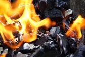 Fire on coal — Stock Photo