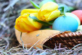 Basket of easter eggs and tulips on hay — Stock Photo