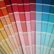 Color palette — Stock Photo