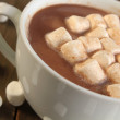 Hot chocolate and marshmallow — Stock Photo #9430156