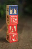 Team wood blocks — Stock Photo