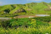 Golan heights. — Stock Photo