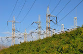 Pylons. — Stock Photo