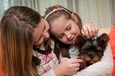 Niñas jugando con perrito — Foto de Stock