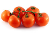 The branch with the tomatoes on a white background. — Stock Photo
