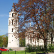 Vilnius cathedral belfry tower - spring in Lithuania — Stock Photo