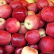 Background with food - fresh red apples — Stock Photo #9955013