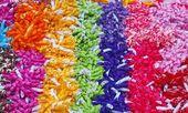 Fond décoratif rayures colorés : rouge, vert, jaune, bleu — Photo
