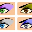 Attractive female eyes with vibrant eye shadow — Stock Vector