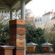 Hives in city — Stock Photo #10645888