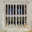Small sewer grate — Stock Photo