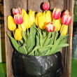 Tulips on sales booth — Stock Photo