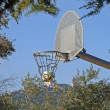 Basketball in outdoor park — Stock Photo #9065442