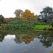 Autumn landscape, the nature of reflection in a pond — Stock Photo