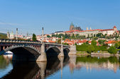 Spring view to Prague Castle — Стоковое фото