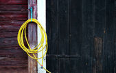 Gelbe gartenschlauch — Stockfoto