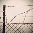 Barbed wire and chain link fence — Stock Photo