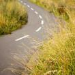Stock Photo: Asphalt bicycle path in field