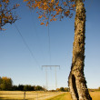 Electricity pylon in the fall — Stock Photo