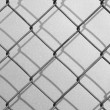 Chainlink fence — Stock Photo #8243622