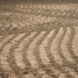 Plowed field — Stock Photo #8244931