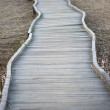 Wooden footpath — Stock Photo