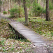 Wooden bridge — Stock Photo #8247152