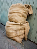 Two sacks — Stock Photo