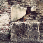 Vintage brick wall — Stock Photo #8339525