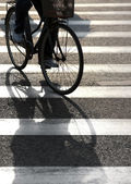 Cyclist on pedestrian crossing — Stock Photo