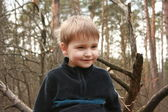 Portrait of young boy or kid in tree outdoors — Stock Photo