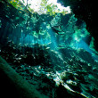Deep inside the cenote — Stock Photo
