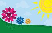 Flowers in Field — Stock Vector