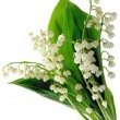 Lily-of-the-valley in posy — Stock Photo