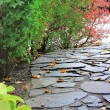 Paved path in a autumn park - Stock Photo