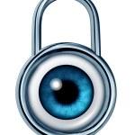 安全监测 — 图库照片