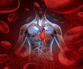 Sistema de sangre del corazón humano — Foto de Stock
