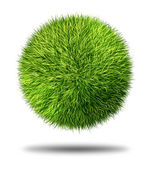 Environmental Conservation Grass Ball — Stock Photo