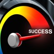 Success Speedometer — Stock Photo