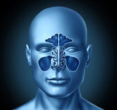 Sinus cavity on a human head — Foto Stock