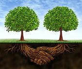 Crecimiento del negocio trabajo en equipo — Foto de Stock