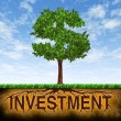 Investment and financial growth - Stock Photo