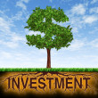 Investment and financial growth — Stockfoto